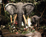 Elephants at the Niagara Falls Rainforest Cafe