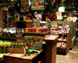 Rainforest Cafe Niagara Falls Gift Shop