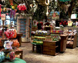 Rainforest Cafe Niagara Falls Gift Store