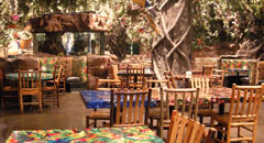 inside the Rainforest Cafe Niagara Falls Theme Restaurant