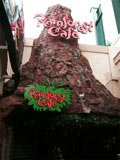Rainforest Cafe Niagara Falls Volcano Exterior