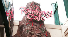 Family Dining in Niagara Falls at the Rainforest Cafe